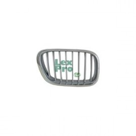 Radiateurgrille Grill Rechts BMW X5 E53 2000-2003