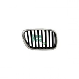 Radiateurgrille Grill Rechts BMW X5 E53 2003-2006